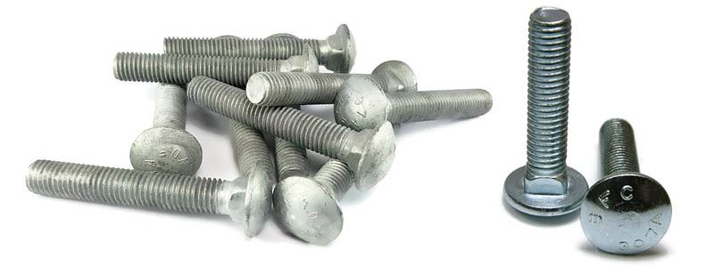 carriage bolts manufacturer in india